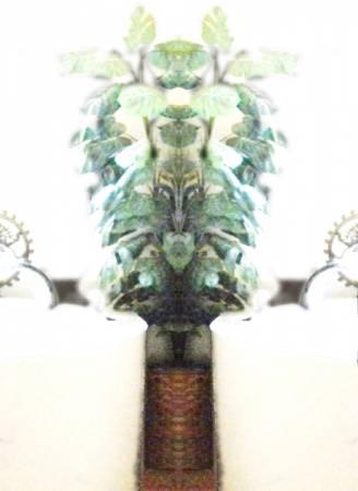 spiderdad4233_600.jpg